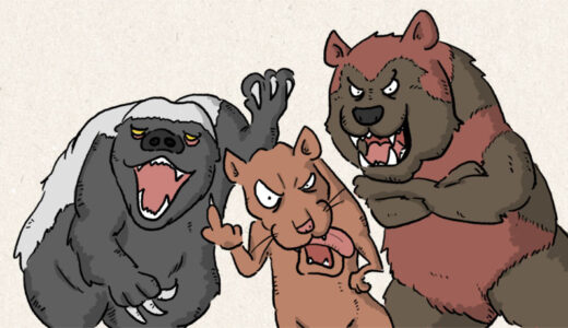 動物界最強はイタチの仲間?イイズナ、クズリ、ラーテルの恐ろしい武勇伝