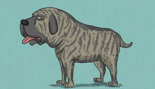 ガチすぎる世界最強の犬の種類ベスト10